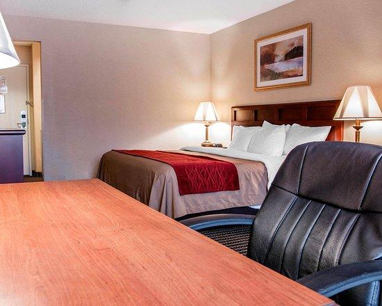 Livonia, ميتشجان: Guest Room