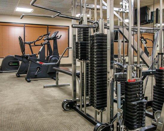 Comfort Inn Livonia: Fitness