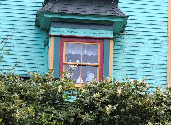 Gaultois, Canada : Local Window