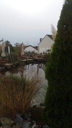 Rohrnbach, ألمانيا: Naturbadeteich