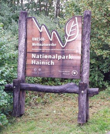 Baumkronenpfad Hainich