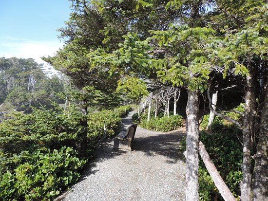 Ucluelet, Canadá: Lots of benches to take a break on