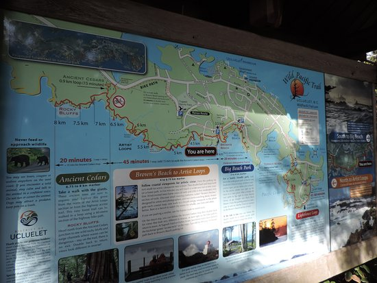 Ucluelet, Canadá: The whole trail