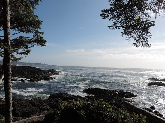 Ucluelet, Canadá: So many great view points