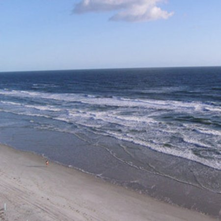 هوليداي إن اكسبرس آند سويتس أوشن فرونت: Beach