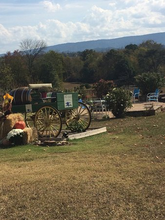 Maryville, TN: photo2.jpg