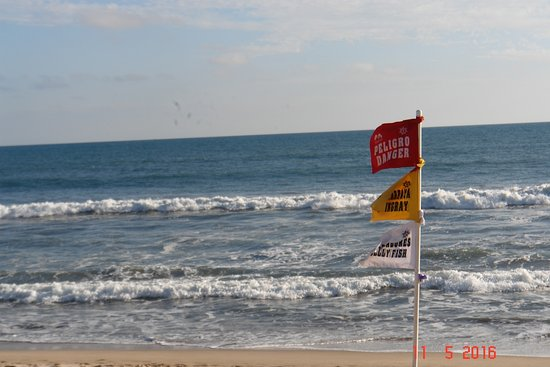 Foto de Playa Olas Altas