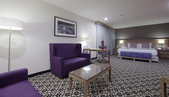 Tlalnepantla, เม็กซิโก: Guest Room