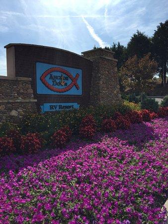Dandridge, TN: photo2.jpg
