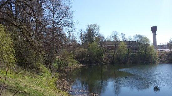 Pargolovo, Ρωσία: Осиновая Роща