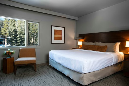 The Juniper Hotel: Standard Room - one king