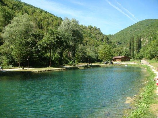 Sellano, Italien: der forellenteich