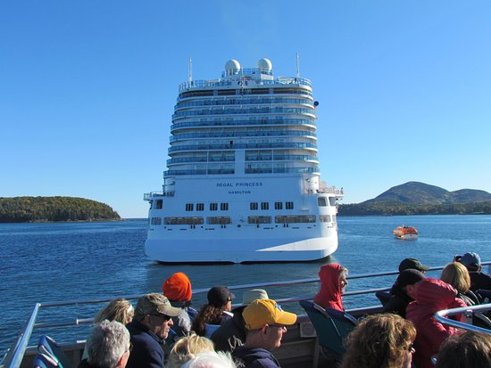 Bar Harbor Whale Watch Company: Passing the cruise ship on way back to dock