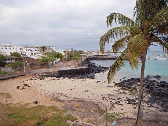 Puerto Baquerizo Moreno, Ecuador: photo2.jpg
