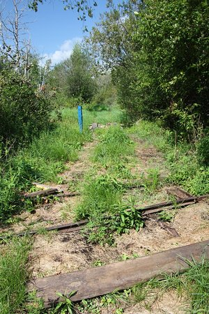 Wainfleet, كندا: There used to be a railroad here