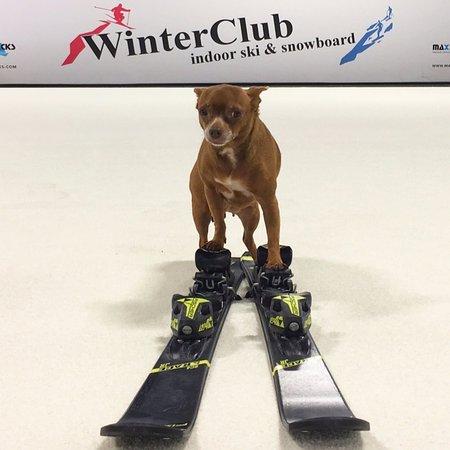 Winter Park, FL: Learn to Ski and Snowboard In Orlando!