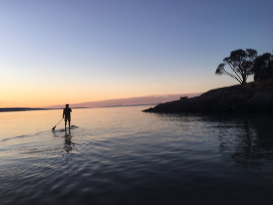 Eastsound, واشنطن: Rent a paddleboard, row boat, canoe or kayak and explore