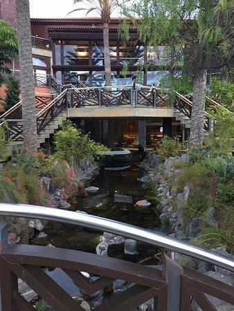 Melia jardines del teide costa adeje tenerife all inclusive resort reviews photos price - Jardines del teide ...