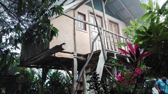 Santiago de Puriscal, Costa Rica: IMG_20161018_062920_large.jpg