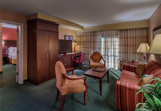 คาร์สันซิตี, เนวาด้า: King Suite Living Area