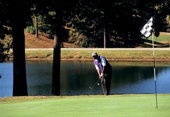 Cartersville, Geórgia: Plantation Golf Club