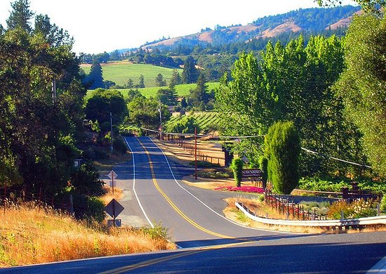 Geyserville, Californie : Route 128 to heaven and Locals Tasting Room