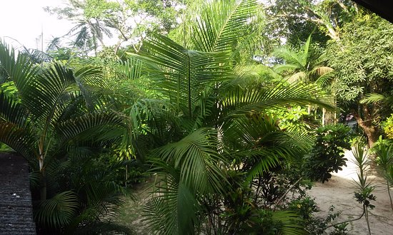 Pousada Vagalume, Ilha do Mel, PR