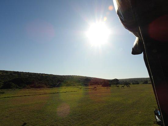 Addo Elephant National Park, Sudáfrica: Wunderschöne Landschaft