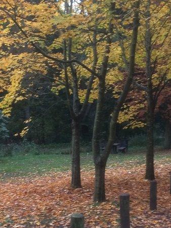 Markinch, UK: photo3.jpg