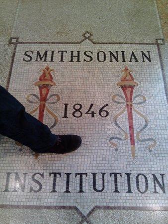 Smithsonian Institution Buidling: particular mosaico en el suelo del istituto Smitsoniano,lugar hermoso e interesante , no dejen d