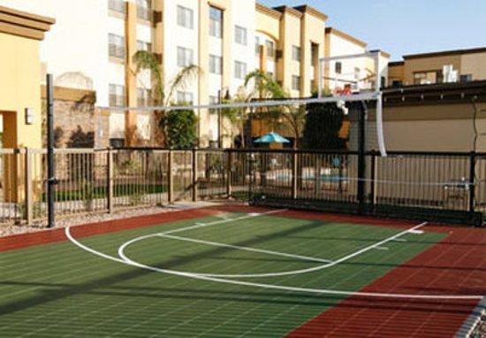 Surprise, AZ: Sport Court