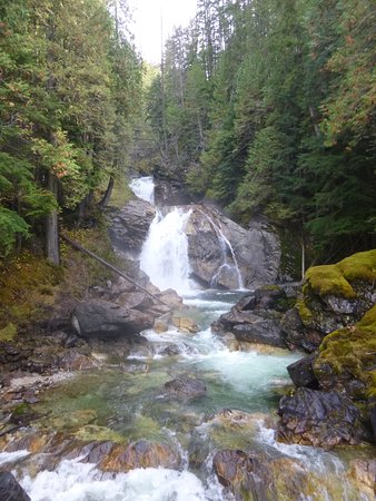 Sicamous, Canada: The lovely waterfalls and surrounding forest.