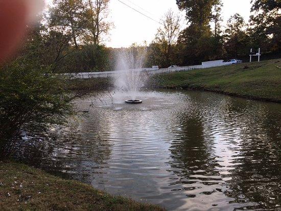 Lynchburg, VA: Pond Fountain