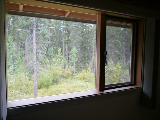 Dease Lake, Kanada: Northern BC's natural beauty right outside your window!