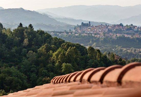 Castelvecchio Pascoli, Itália: Serchio Valley View