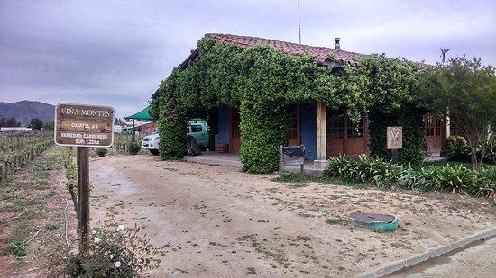 Santa Cruz, Chili : DSC_1115_large.jpg