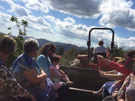 Flat Rock, NC: Tractor ride showed beautiful views of the orchard and mountains.