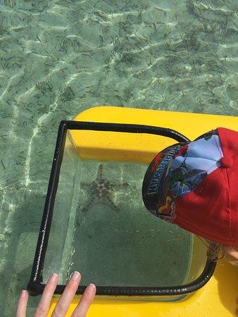 Erakor Island Resort & Spa Φωτογραφία