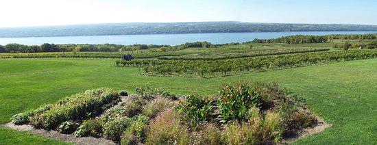 Burdett, Νέα Υόρκη: Lake Seneca, viewed from the veranda