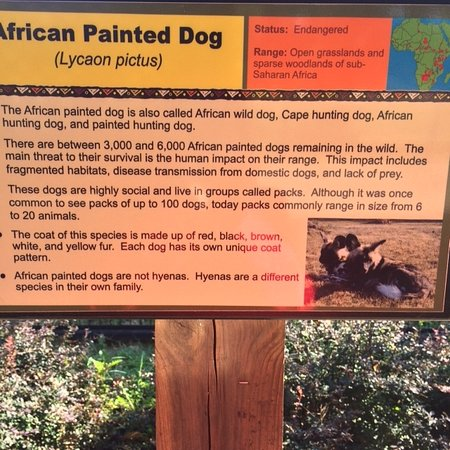 Salina, KS: This sign explains the above photo