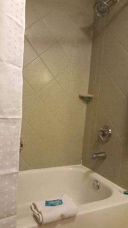 Holiday Inn Express Birmingham/Inverness: Clean bathroom nice shower head .