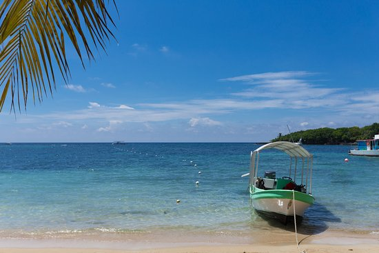 Mr. Tucan Hotel - UPDATED 2017 Prices & Reviews (Roatan, Honduras ...