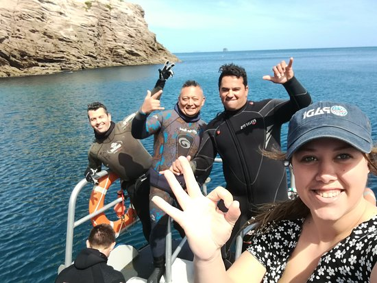 Whitianga, New Zealand: Diving Champagne Rocks