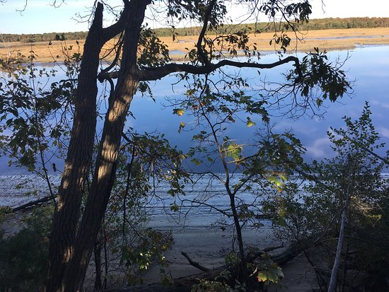 Millville, NJ: The beauty of Maurice River Bluffs