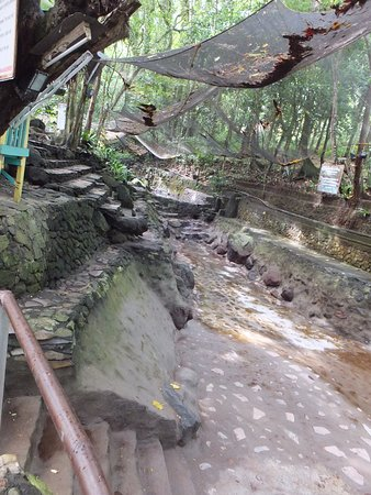 all dried up Picture of Ardent Hot Springs Camiguin TripAdvisor