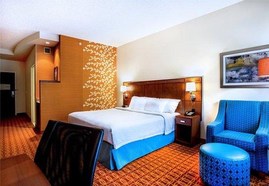 Ocoee, Φλόριντα: King Guest Room