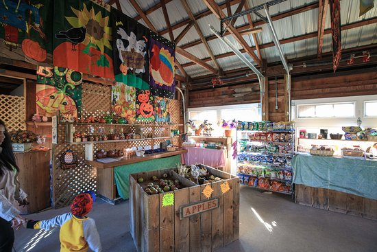 Applewood Winery: Store