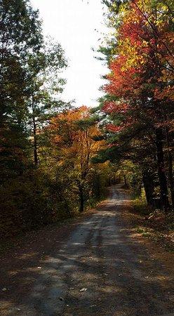 Merrickville, Canadá: FB_IMG_1477020566994_large.jpg