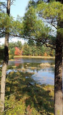 Merrickville, Καναδάς: FB_IMG_1477020537152_large.jpg