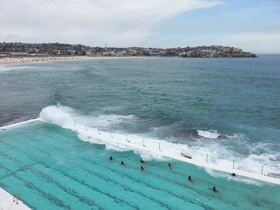 Bondi, Avustralya: 20161021_144534_large.jpg